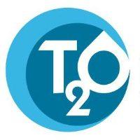 (c) T2o.es